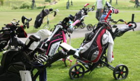 Golf cup12